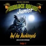 Sherlock Holmes Junior - Ruf des Nachtvogels